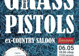 Блюграсс-бэнд Grass Pistols в Рекорде