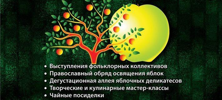 Фестиваль Яблочный Спас 2017