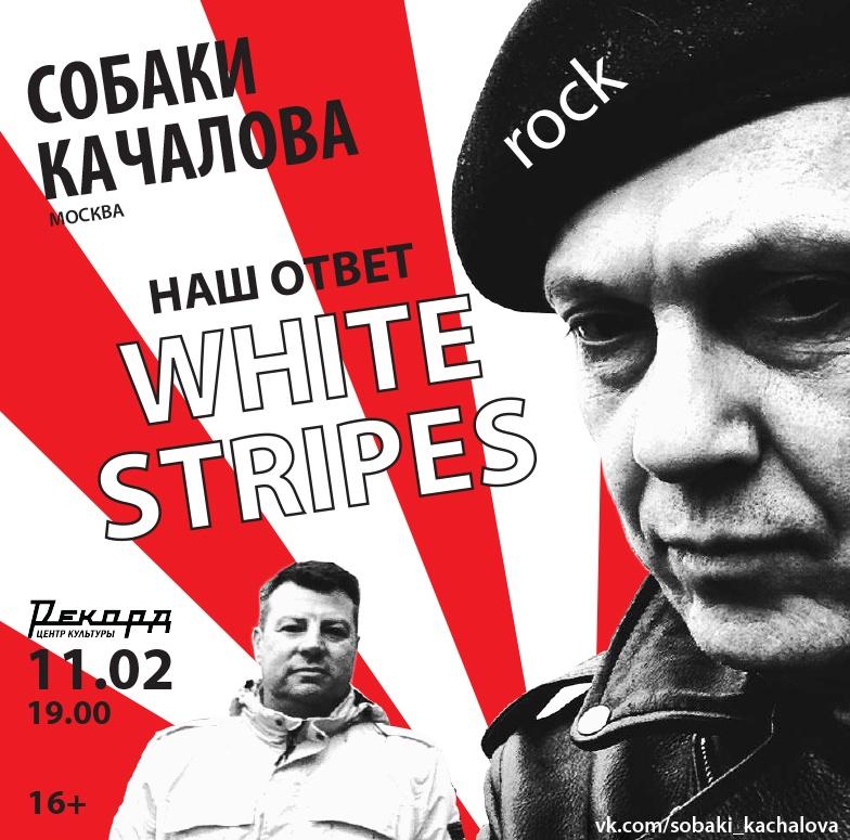 Концерт рок-группы «Собаки Качалова»