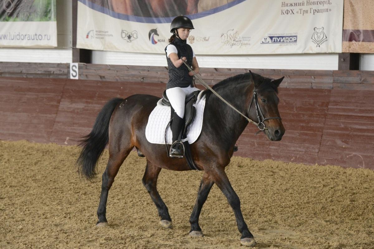Соревнования по адаптивному конному спорту для людей с ограниченными возможностями прошли в Дальнеконстантиновском районе
