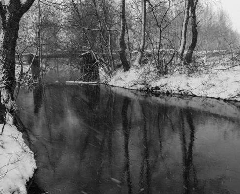 Выставка борского фотографа Юрия Рогова «Вдохновение»