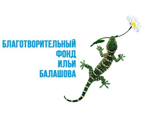 Благотворительный фонд Ильи Балашова