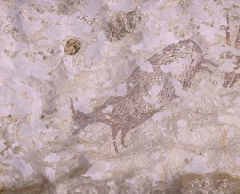 Археологи обнаружили самую древнюю в мире фигуративную наскальную живопись на индонезийском острове Сулавеси