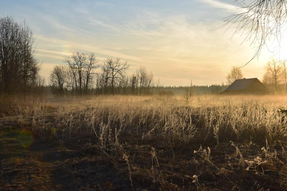 Выставка московского фотографа и зоолога Алексея Белякова «Мгновения тишины»