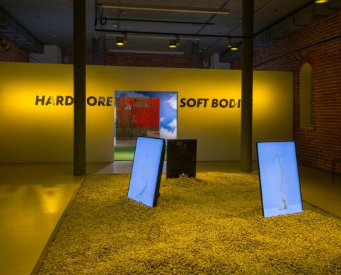 19 ноября нижегородский Арсенал проведёт онлайн-встречу «У меня плохие новости, или Как делать выставки»